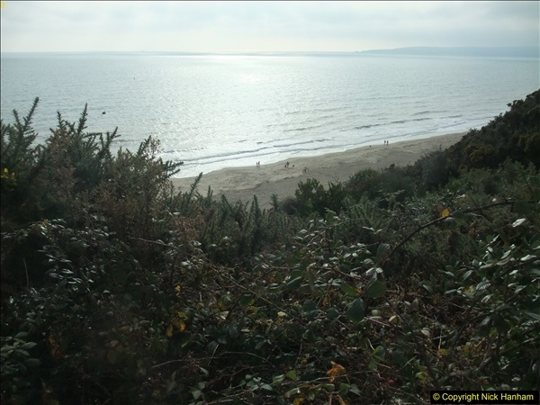 2015-10-31 Canford Cliffs, Poole, Dorset.  (15)111