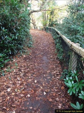 2015-10-31 Canford Cliffs, Poole, Dorset.  (25)121