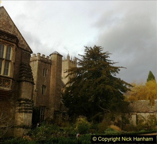 2016-11-17 Wells Cathedral and the Bishops Palace.  (36)201