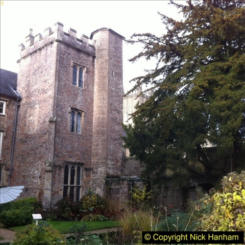 2016-11-17 Wells Cathedral and the Bishops Palace.  (37)202