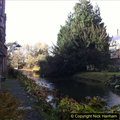 2016-11-17 Wells Cathedral and the Bishops Palace.  (39)204