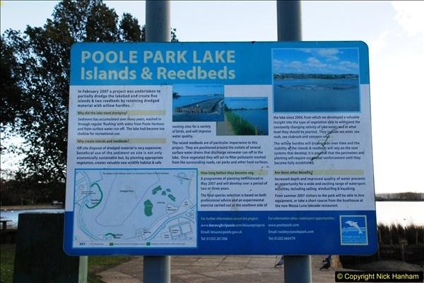 2017-02-24 Poole Park, Poole, Dorset.  (11)254