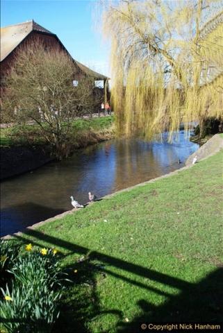 2017-03-09 Salisbury, Wiltshire.  (11)311