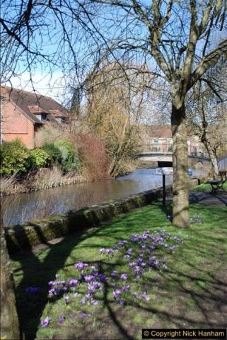 2017-03-09 Salisbury, Wiltshire.  (1)301