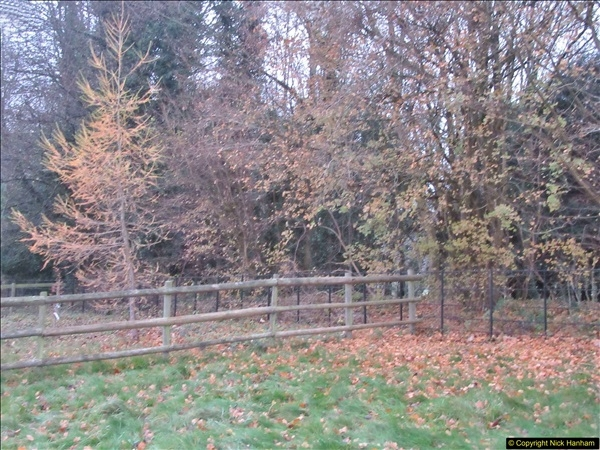 2017-12-02 Hughenden Manor Twilight Walk.  (12)323