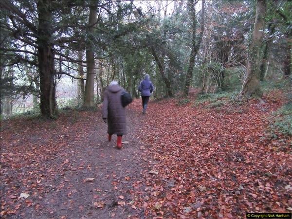 2017-12-02 Hughenden Manor Twilight Walk.  (16)327