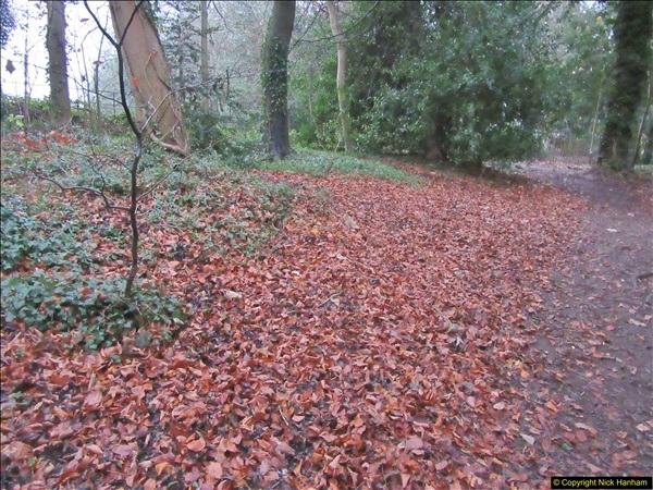 2017-12-02 Hughenden Manor Twilight Walk.  (17)328