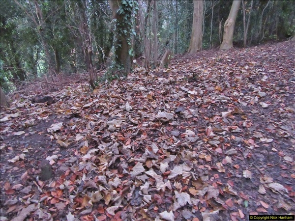 2017-12-02 Hughenden Manor Twilight Walk.  (20)331