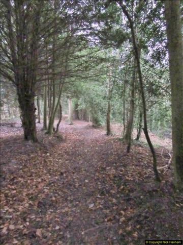 2017-12-02 Hughenden Manor Twilight Walk.  (21)332