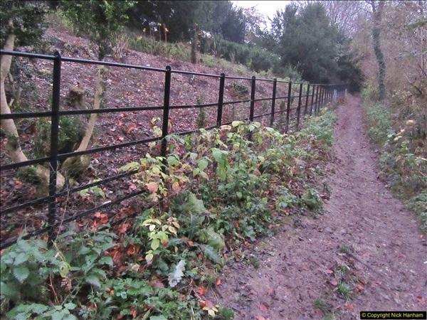 2017-12-02 Hughenden Manor Twilight Walk.  (27)338