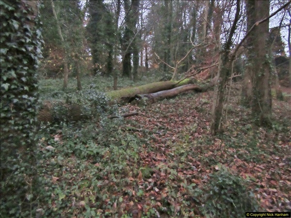 2017-12-02 Hughenden Manor Twilight Walk.  (32)343
