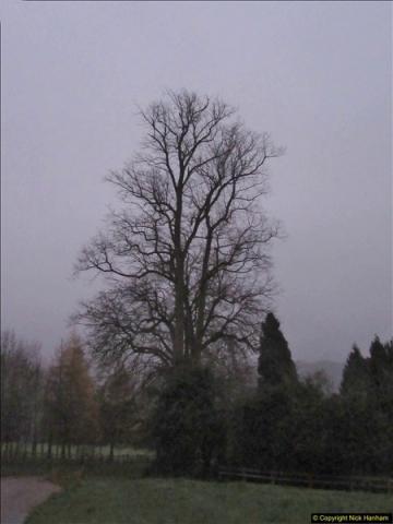 2017-12-02 Hughenden Manor Twilight Walk.  (45)356