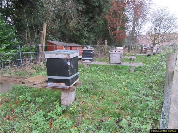 2017-12-02 Hughenden Manor Twilight Walk.  (7)318
