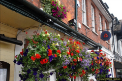 2015-08-01 Marlborough, Wiltshire.  (12)023