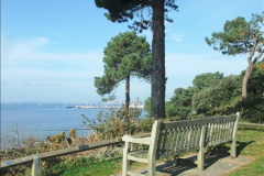 2015-10-20 Evening Hill, Poole, Dorset.  (17)092