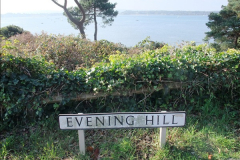 2015-10-20 Evening Hill, Poole, Dorset.  (21)096