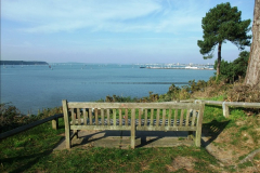 2015-10-20 Evening Hill, Poole, Dorset.  (6)081