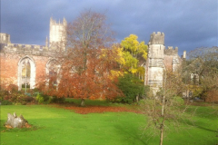 2016-11-17 Wells Cathedral and the Bishops Palace.  (26)191