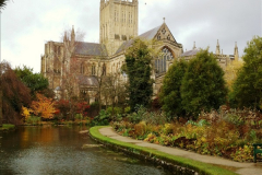 2016-11-17 Wells Cathedral and the Bishops Palace.  (56)221