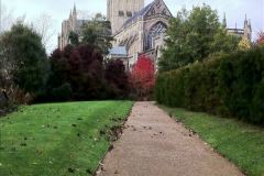 2016-11-17 Wells Cathedral and the Bishops Palace.  (57)222