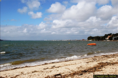 2017-03-04 Evening Hill & Sandbanks, Poole, Dorset.  (11)288