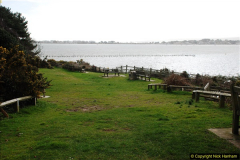 2017-03-04 Evening Hill & Sandbanks, Poole, Dorset.  (20)297