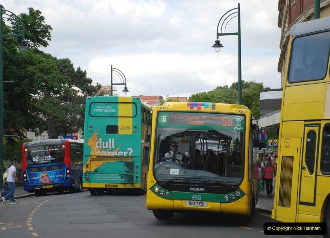 2019-07-11 More Yellow Buses. (33) 33