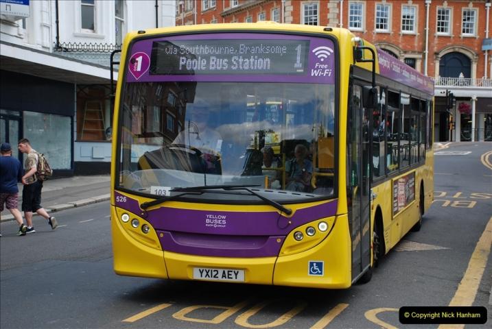2019-07-11 More Yellow Buses. (46) 46