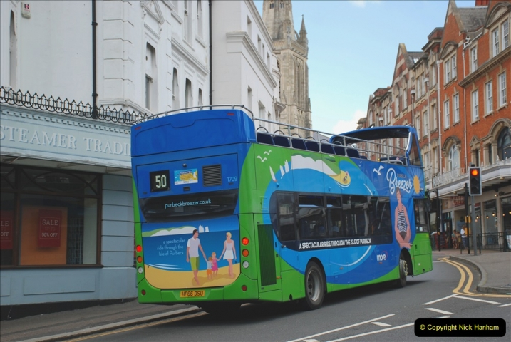2019-07-11 More Yellow Buses. (59) 59