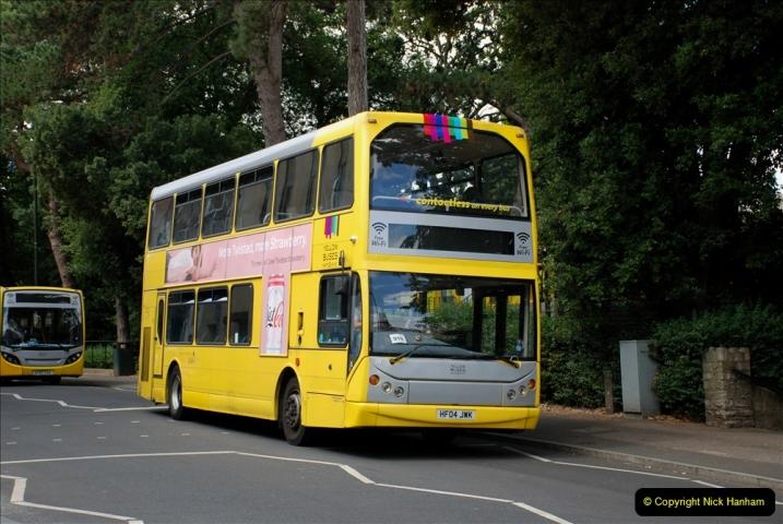 2019-07-11 More Yellow Buses. (78) 78