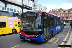2019-07-11 More Yellow Buses. (45) 45