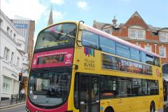 2019-07-11 More Yellow Buses. (60) 60