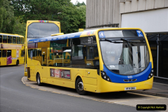 More Yellow Buses Number 2