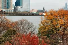 2019-11-10 New York. (282) Ellis Island and the imigrants. 282