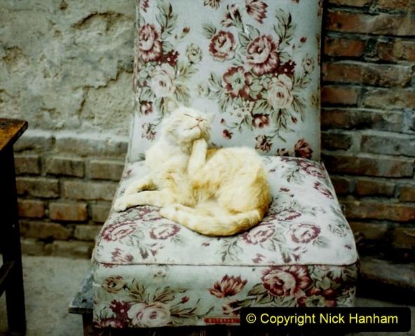 Pakistan and China 1996 June. (115) Gaomiao Temple in Zhongwei. 115