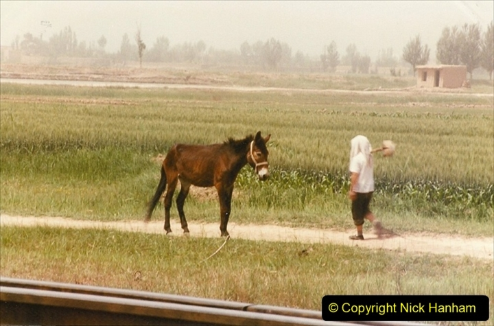 Pakistan and China 1996 June. (375) More linesiding. 375