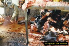 Pakistan and China 1996 June. (47) Karachi.  Local Market. 047