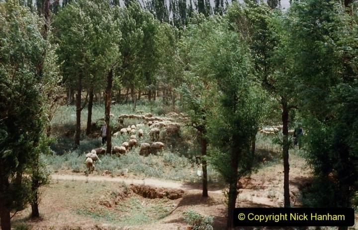 Pakistan and China 1996 June. (28) Linesiding near Baotou. 028