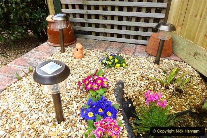 2021-03-26 New garden lights. Garden makeover. (28) 028