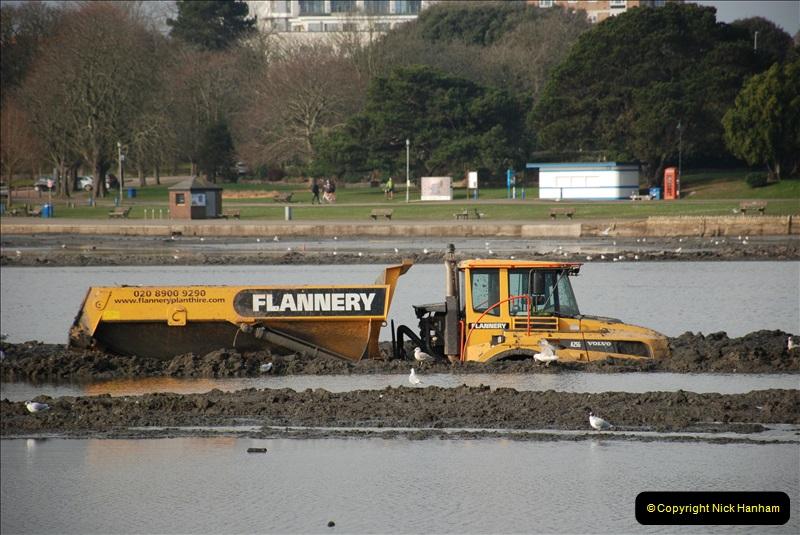 2019-02-17 Poole Park, Poole, Dorset. (3) 001