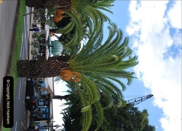 2012-11-08 Funchal, Madeira.  (225)350