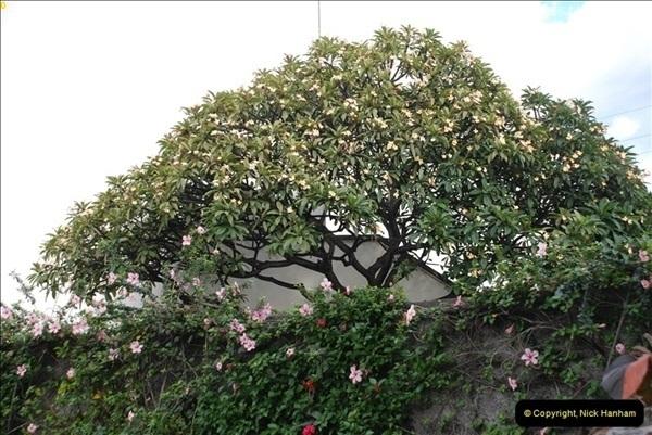 2012-11-08 Funchal, Madeira.  (239)364