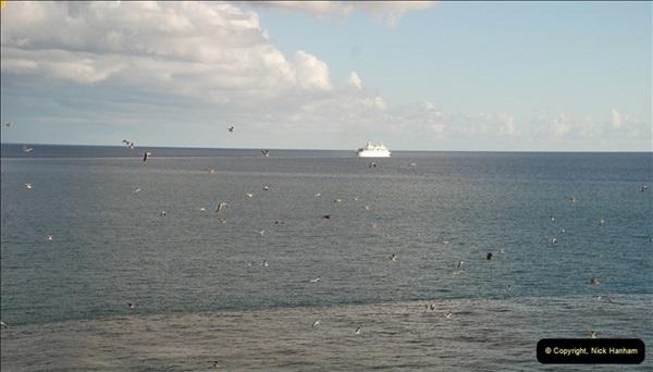 2012-11-08 Funchal, Madeira.  (436)561