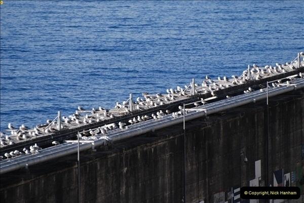 2012-11-08 Funchal, Madeira.  (54)179