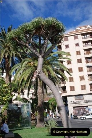 2012-11-09 Santa Cruz de la Palma, La Palma, Canary Islands.  (76)076