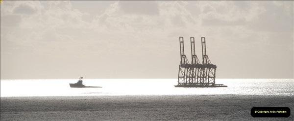 2012-11-10 Santa Cruz de Tenerife, Tenerife, Canary Islands.  (37)396