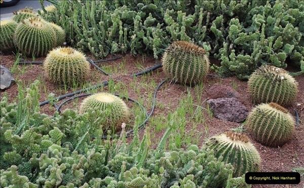 2012-11-10 Santa Cruz de Tenerife, Tenerife, Canary Islands.  (79)438