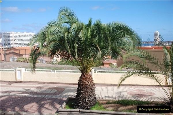 2012-11-11 Las Palmas, Grand Canaria, Canary Islands (143)149