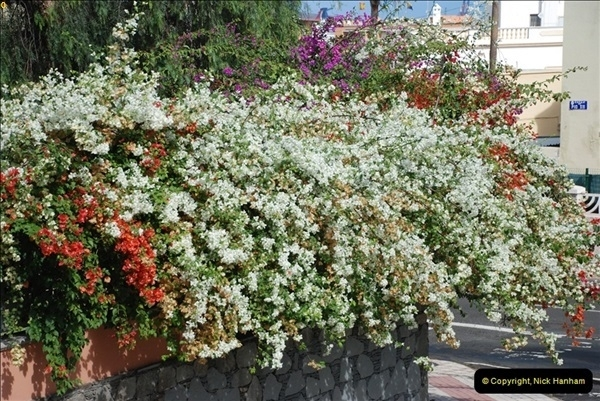 2012-11-11 Las Palmas, Grand Canaria, Canary Islands (148)154