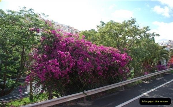2012-11-11 Las Palmas, Grand Canaria, Canary Islands (184)190